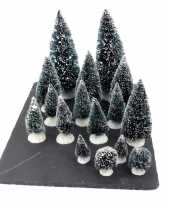 Kerstdorp onderdelen miniatuur set van 16x boompjes